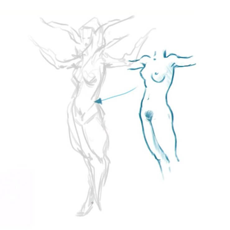 Анатомия персонажа Cendrea