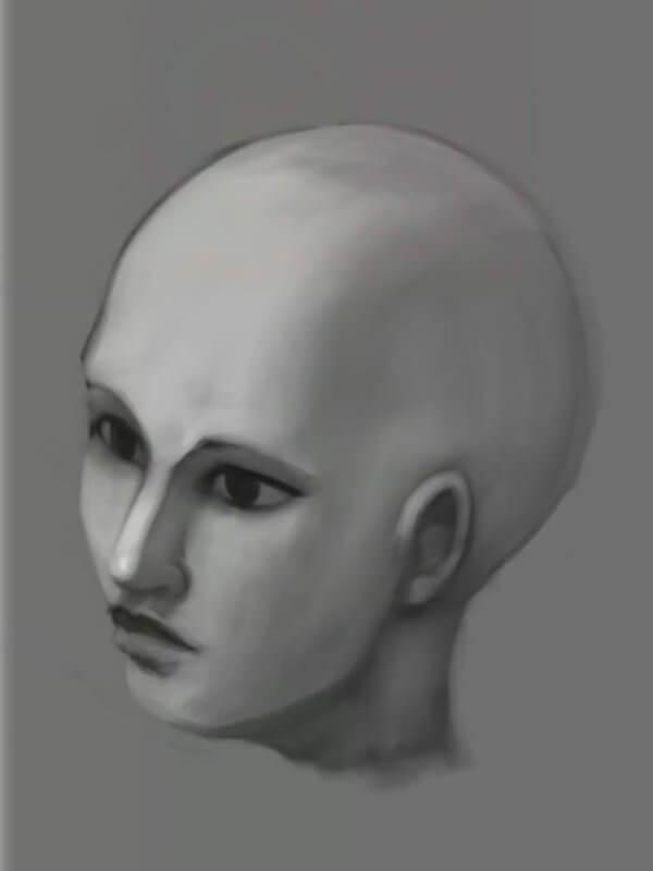 Итоговое черно-белое изображение головы человека