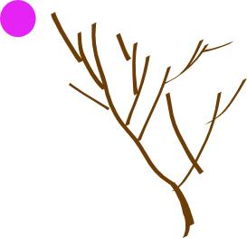 Объединяем ветки в один объект и рисуем круг в Inkscape
