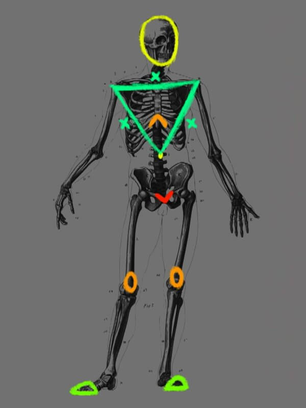 Определим ширину плечей персонажа